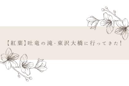 【紅葉】吐竜の滝・東沢大橋に行ってきた!