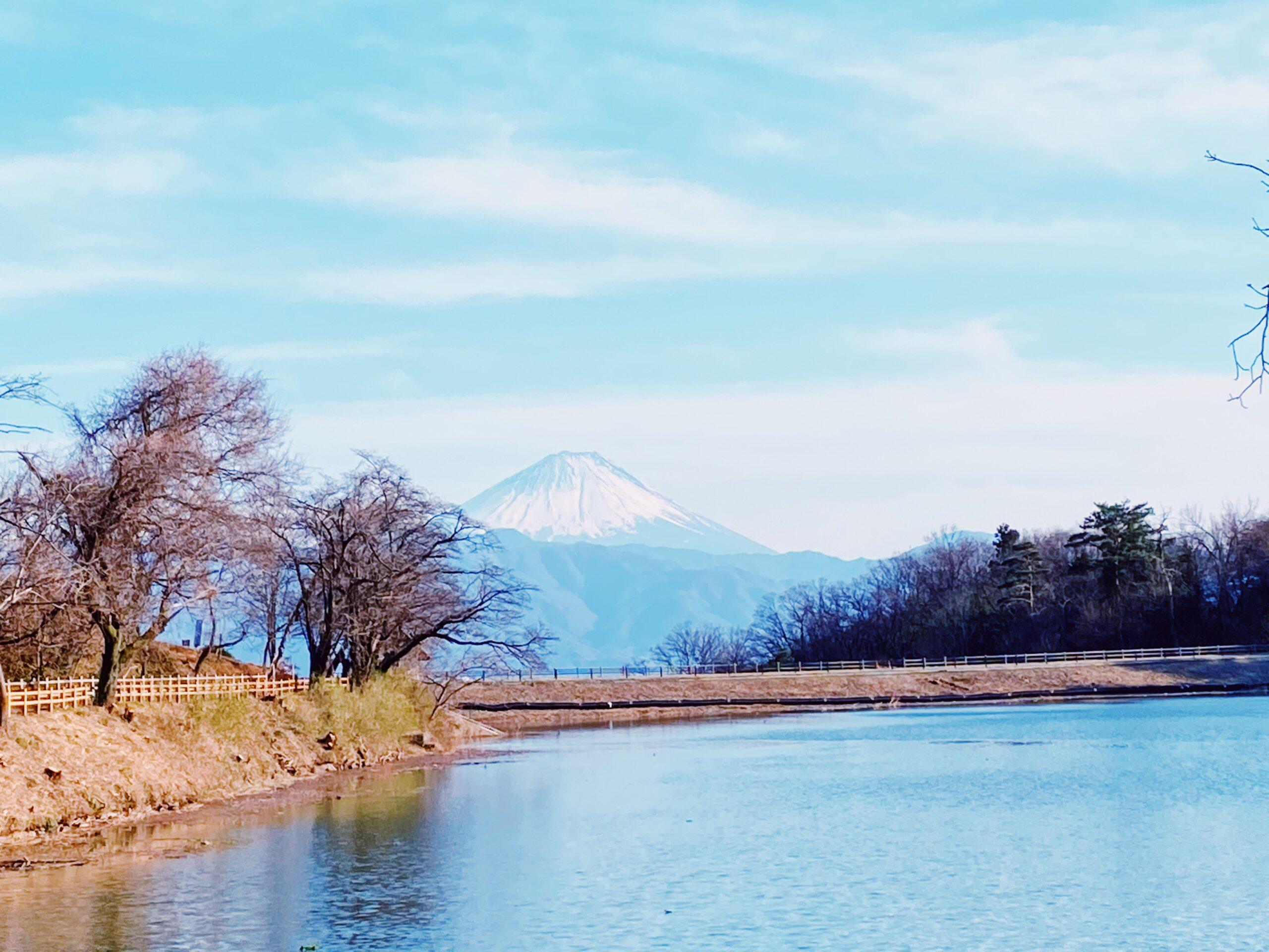 後沢と富士山
